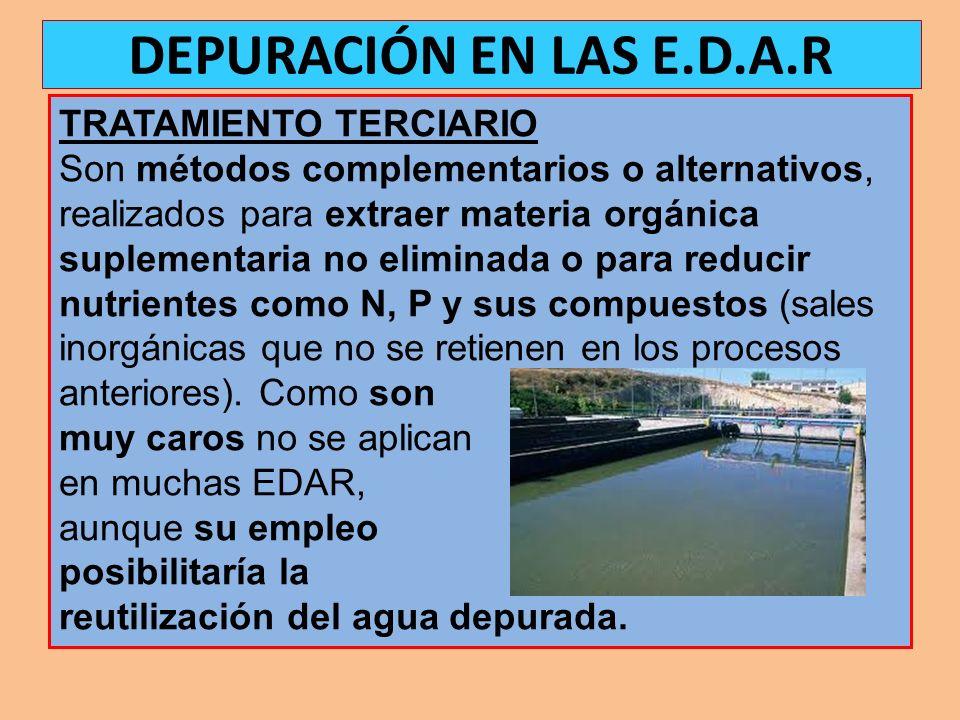 DEPURACIÓN EN LAS E.D.A.R TRATAMIENTO TERCIARIO