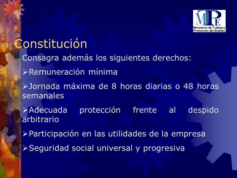 Constitución Consagra además los siguientes derechos: