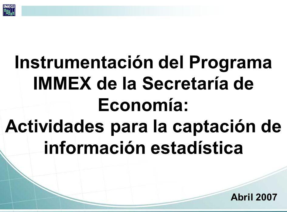 Instrumentación del Programa IMMEX de la Secretaría de Economía: