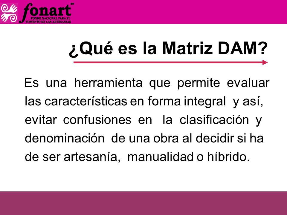 ¿Qué es la Matriz DAM las características en forma integral y así,