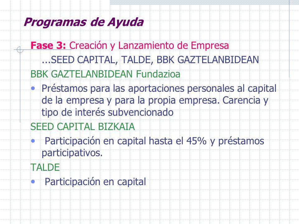 Programas de Ayuda Fase 3: Creación y Lanzamiento de Empresa