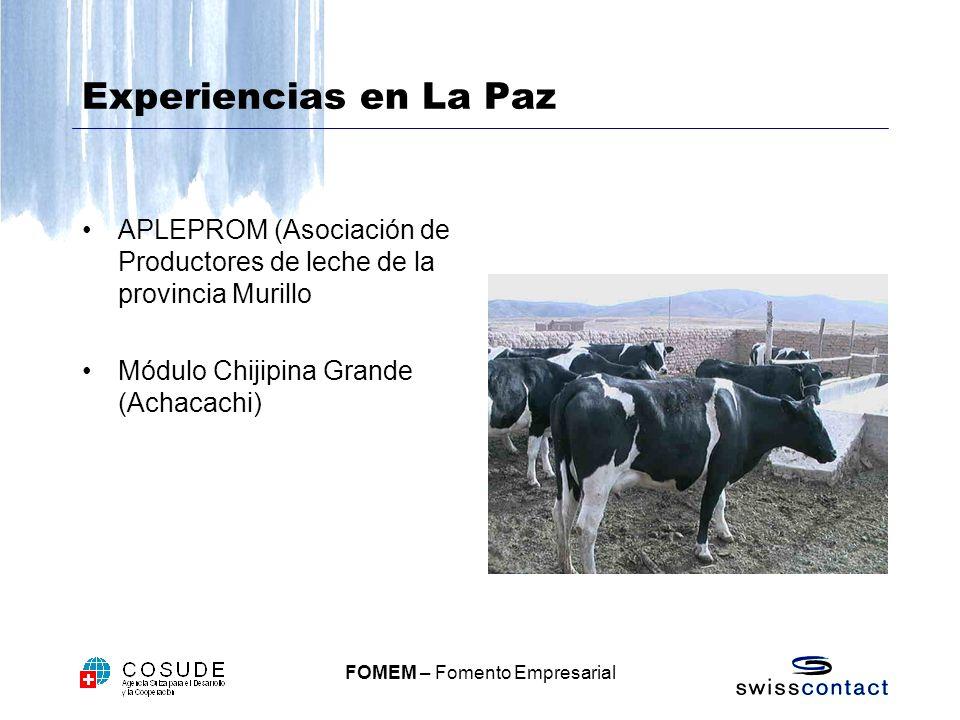 Experiencias en La Paz APLEPROM (Asociación de Productores de leche de la provincia Murillo.