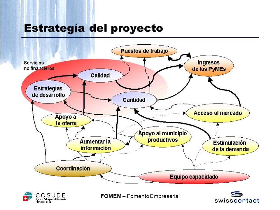 Estrategía del proyecto