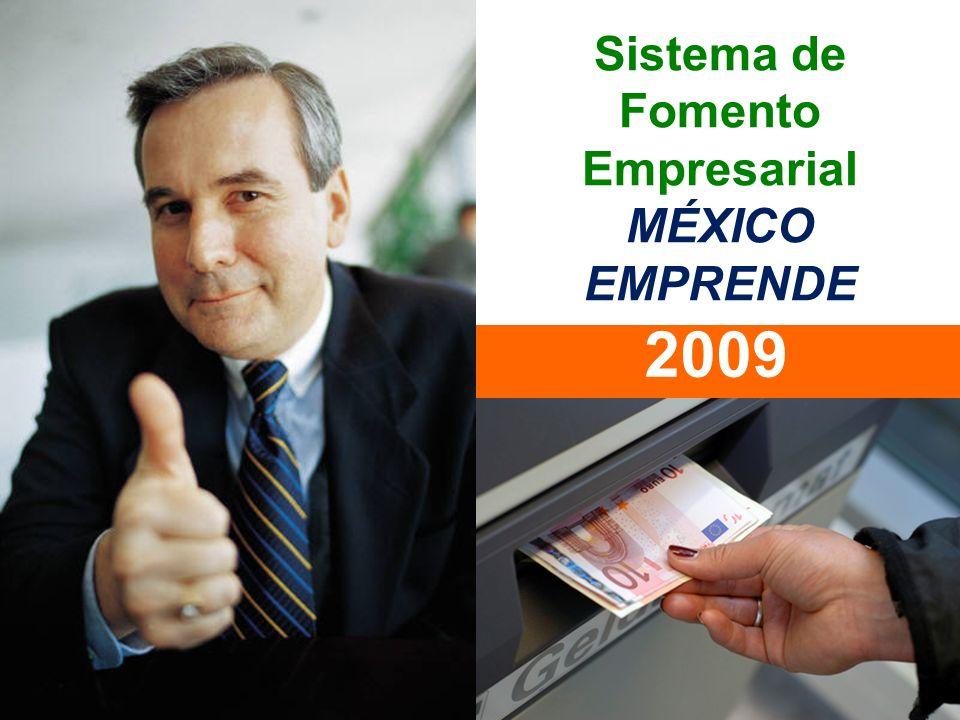 Sistema de Fomento Empresarial MÉXICO EMPRENDE