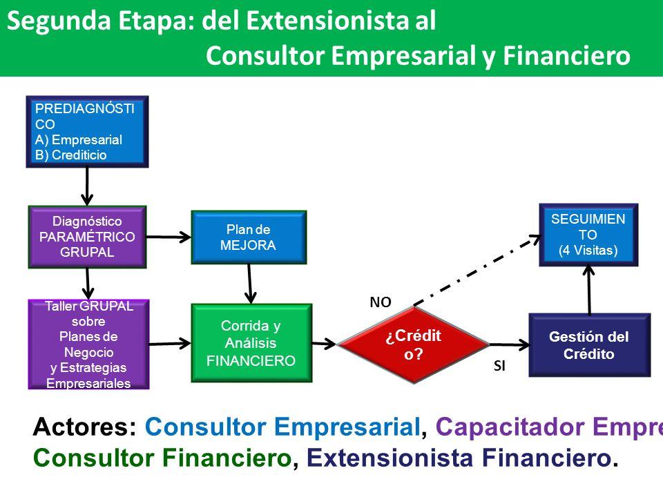Segunda Etapa: del Extensionista al Consultor Empresarial y Financiero