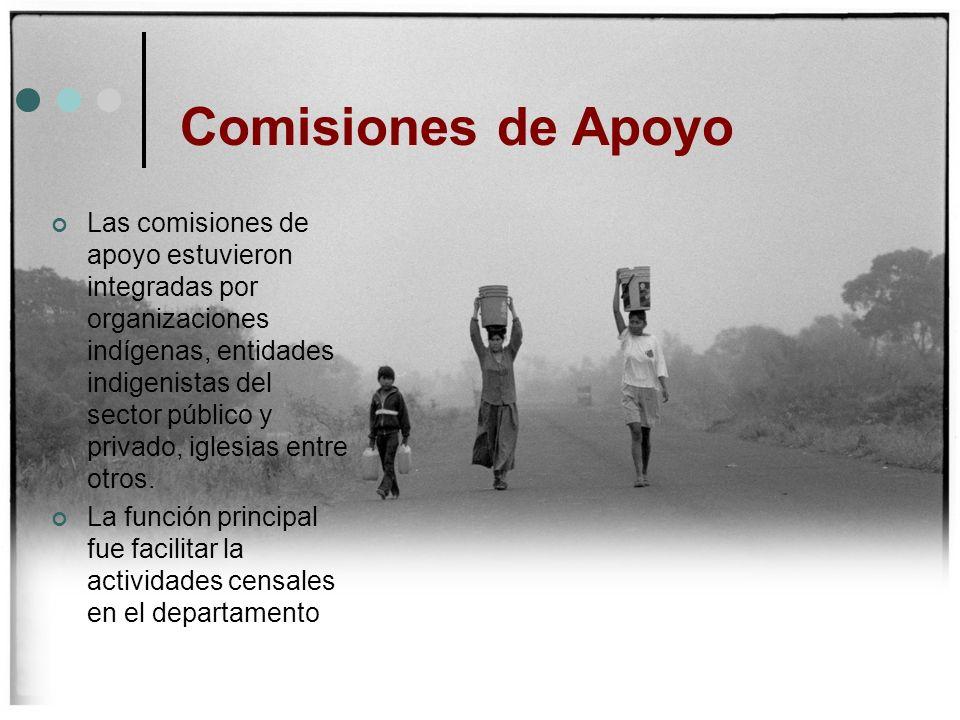 Comisiones de Apoyo