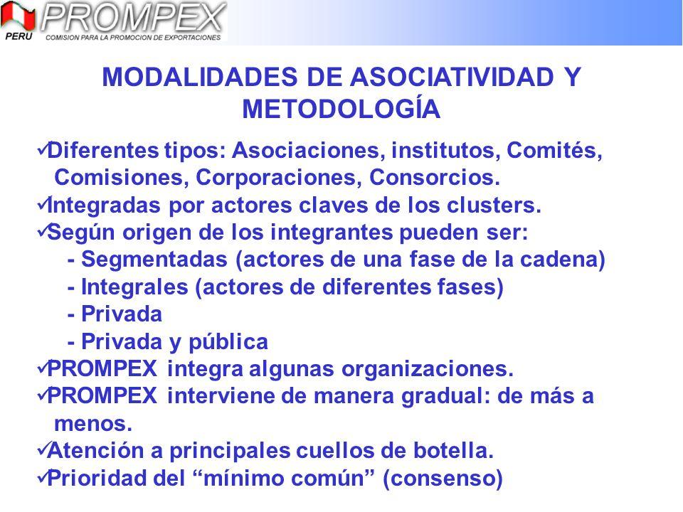 MODALIDADES DE ASOCIATIVIDAD Y METODOLOGÍA