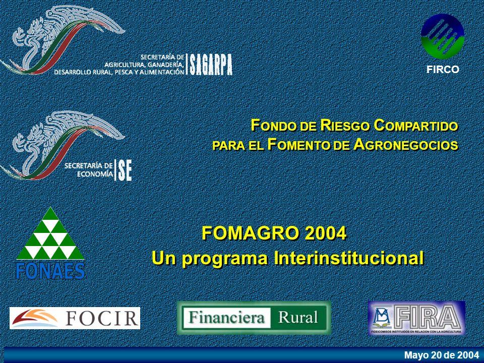 FONAES FOMAGRO 2004 Un programa Interinstitucional