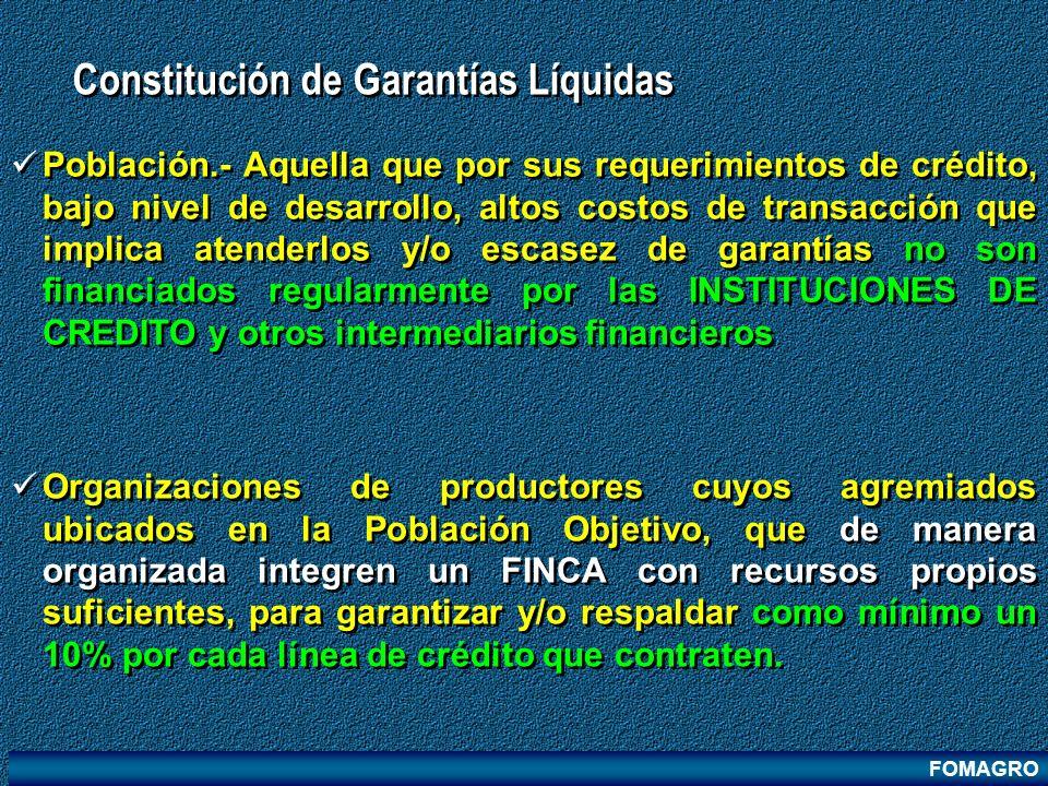 Constitución de Garantías Líquidas