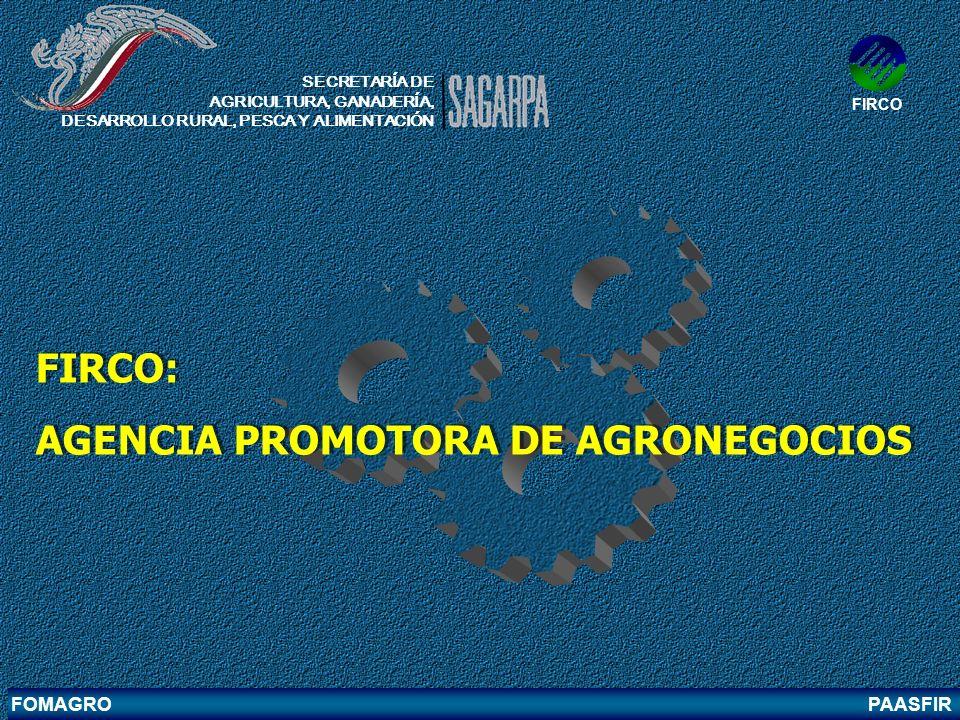 AGENCIA PROMOTORA DE AGRONEGOCIOS