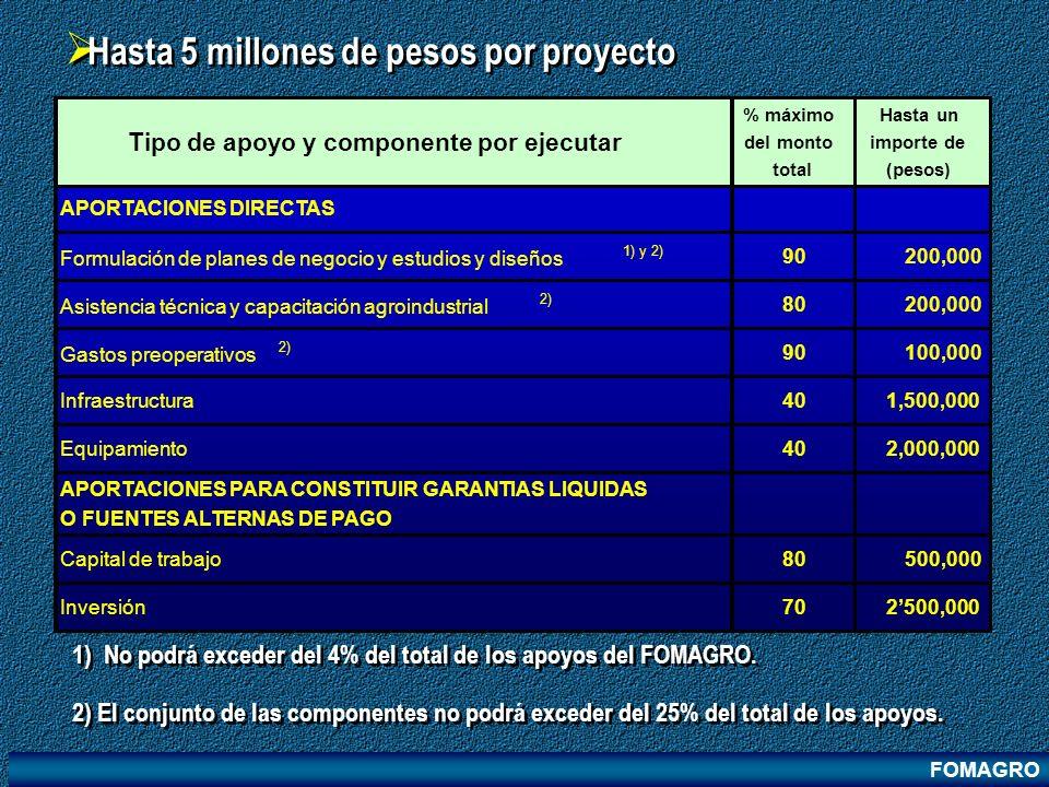 Hasta 5 millones de pesos por proyecto