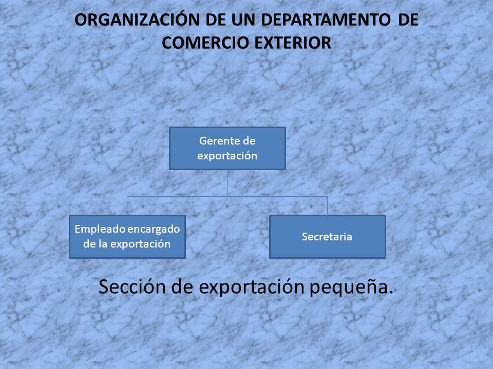 ORGANIZACIÓN DE UN DEPARTAMENTO DE COMERCIO EXTERIOR