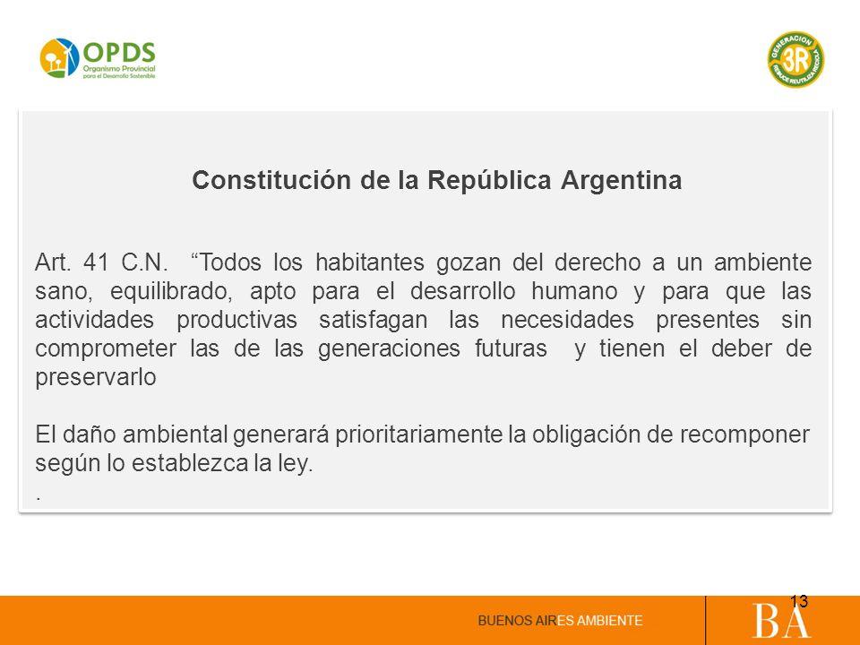 Constitución de la República Argentina