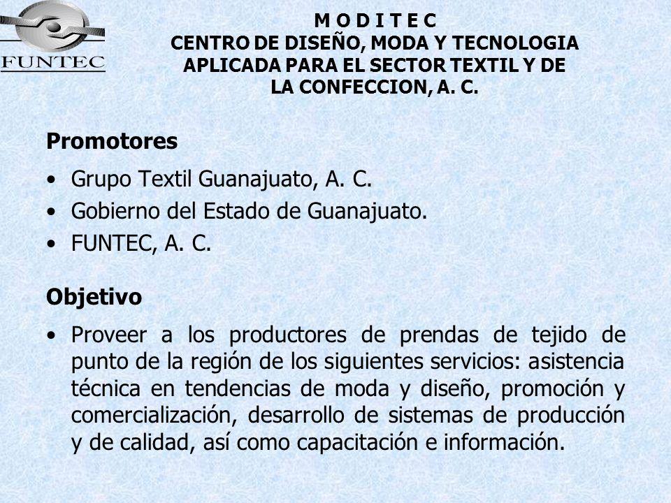 Grupo Textil Guanajuato, A. C. Gobierno del Estado de Guanajuato.