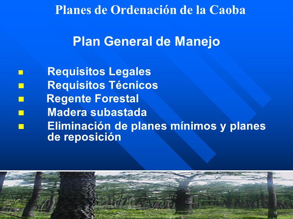 Planes de Ordenación de la Caoba