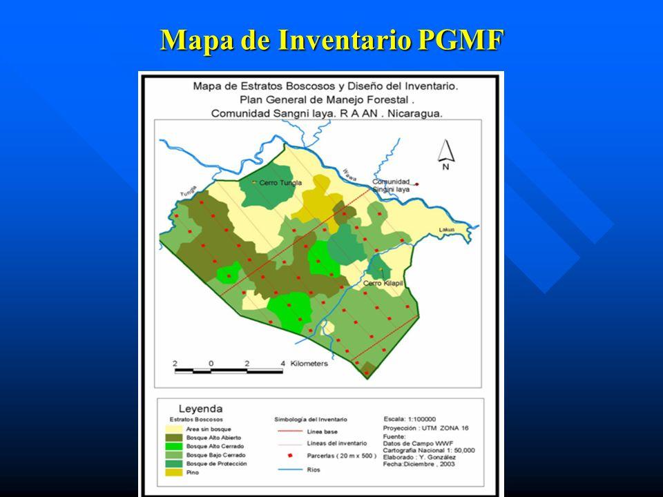 Mapa de Inventario PGMF