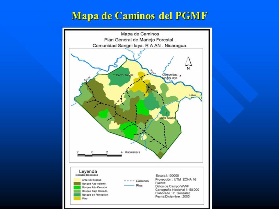 Mapa de Caminos del PGMF