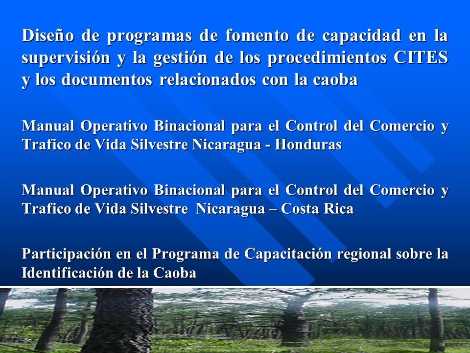 Diseño de programas de fomento de capacidad en la supervisión y la gestión de los procedimientos CITES y los documentos relacionados con la caoba
