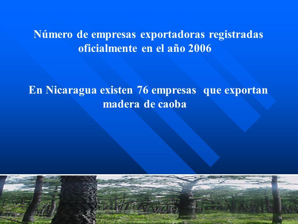 En Nicaragua existen 76 empresas que exportan madera de caoba