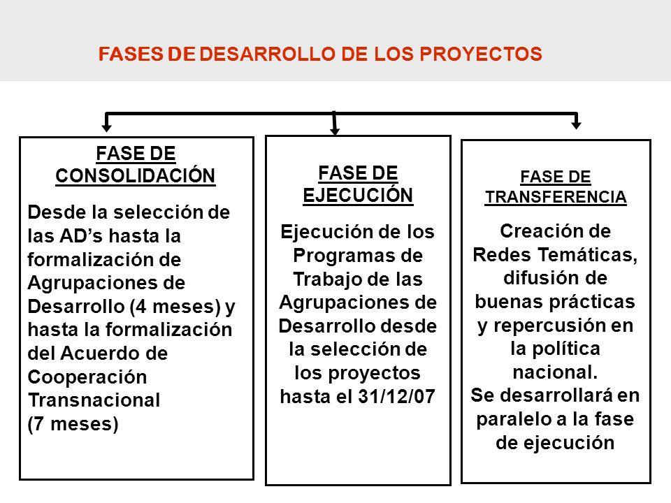 FASES DE DESARROLLO DE LOS PROYECTOS
