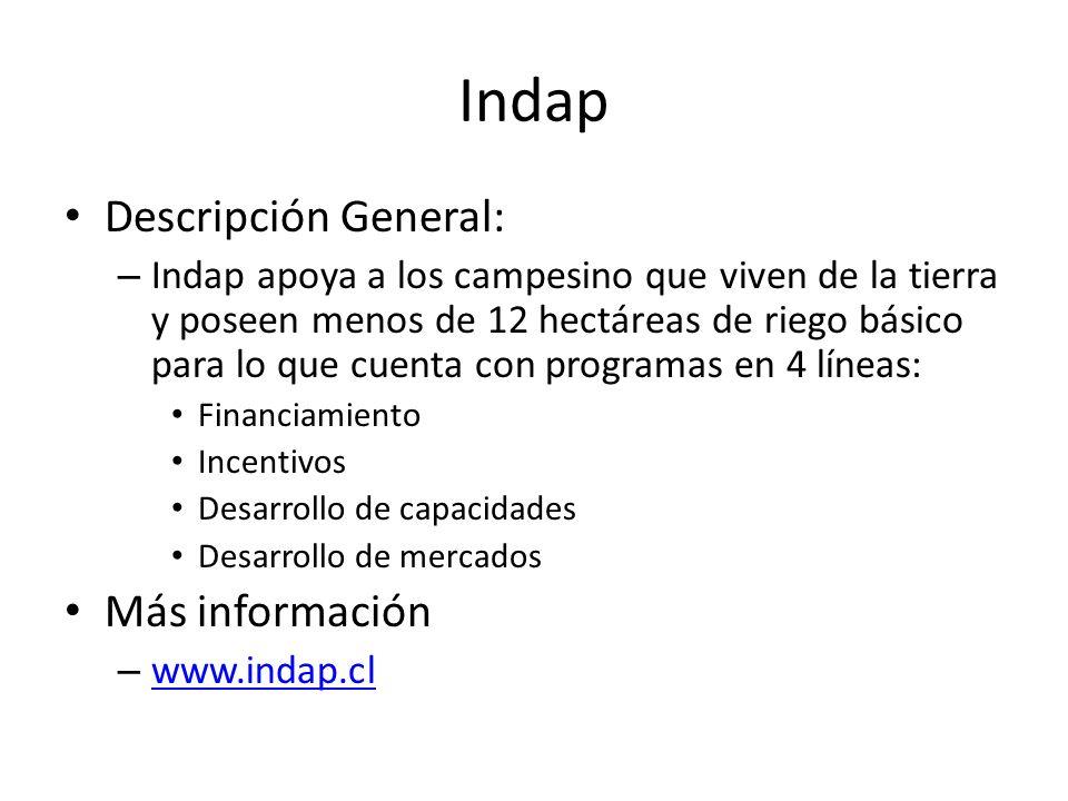 Indap Descripción General: Más información