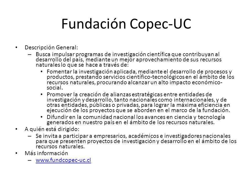 Fundación Copec-UC Descripción General: