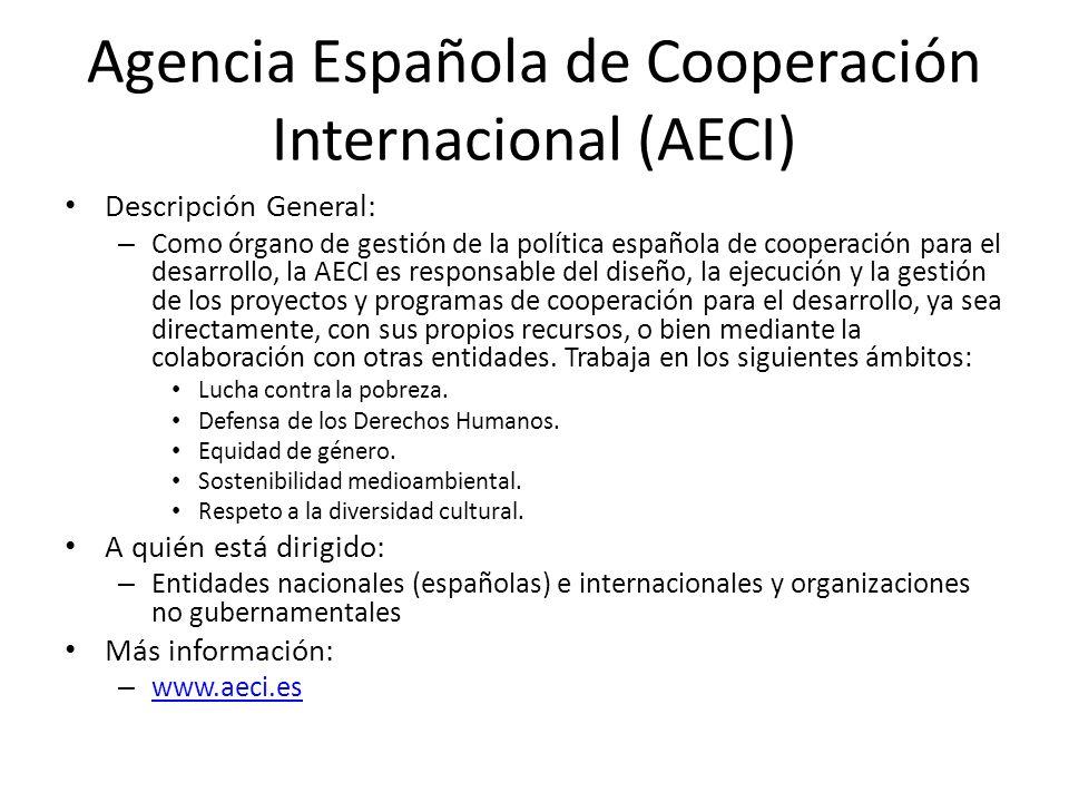 Agencia Española de Cooperación Internacional (AECI)