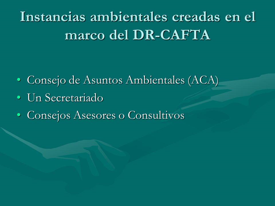 Instancias ambientales creadas en el marco del DR-CAFTA