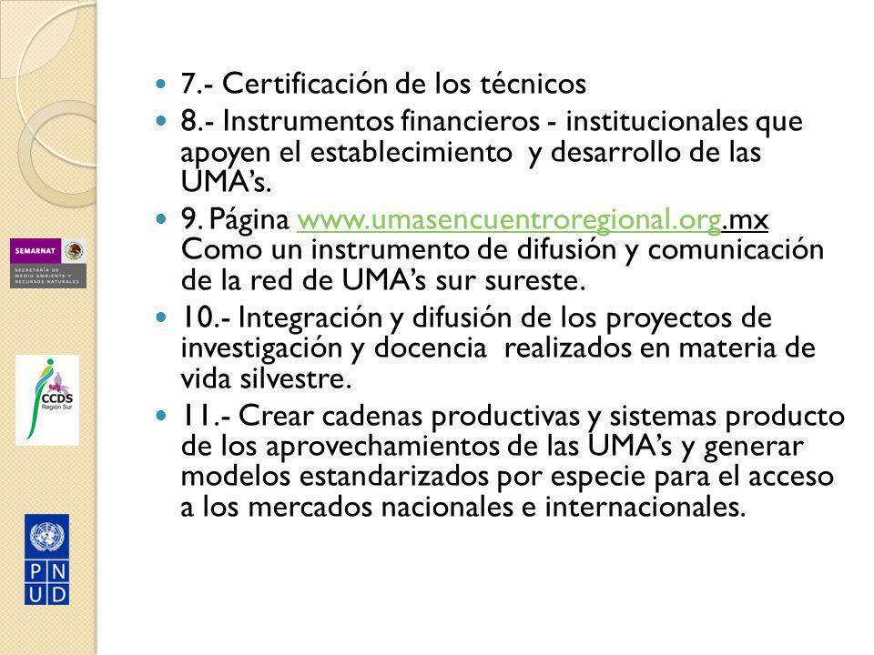 7.- Certificación de los técnicos