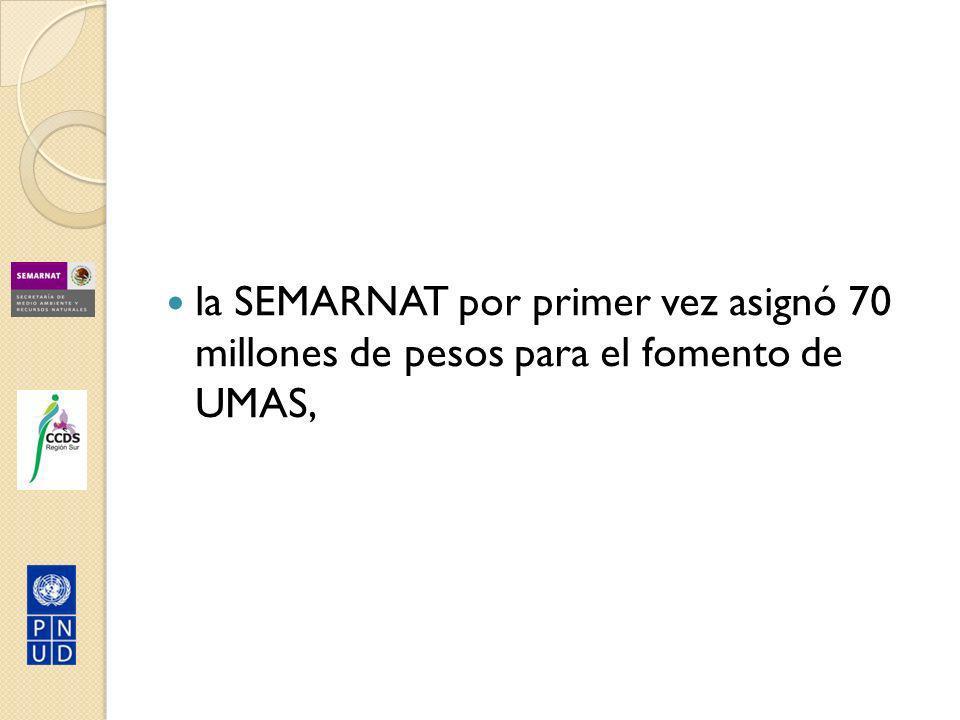la SEMARNAT por primer vez asignó 70 millones de pesos para el fomento de UMAS,