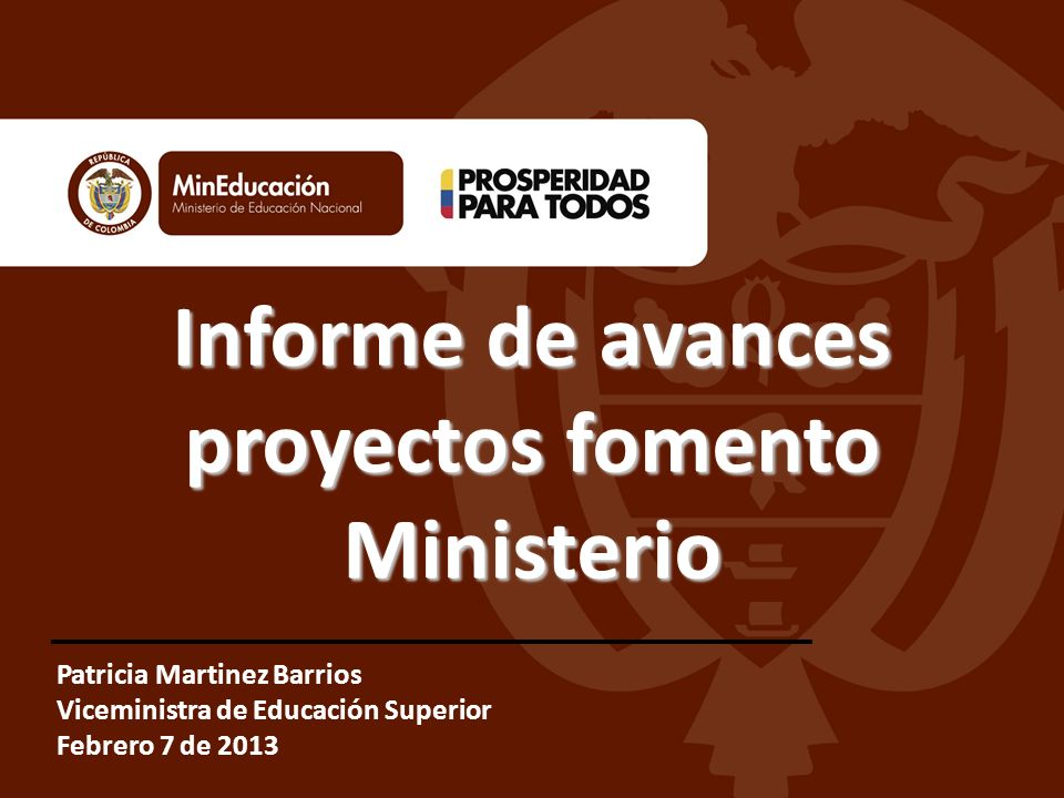 Informe de avances proyectos fomento Ministerio