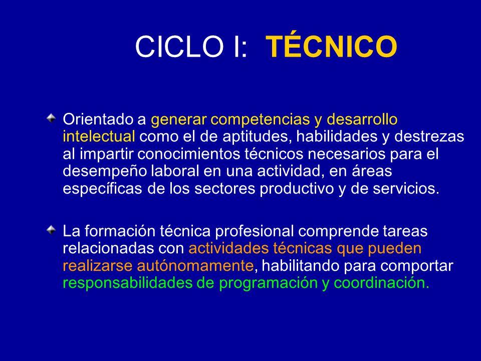 CICLO I: TÉCNICO
