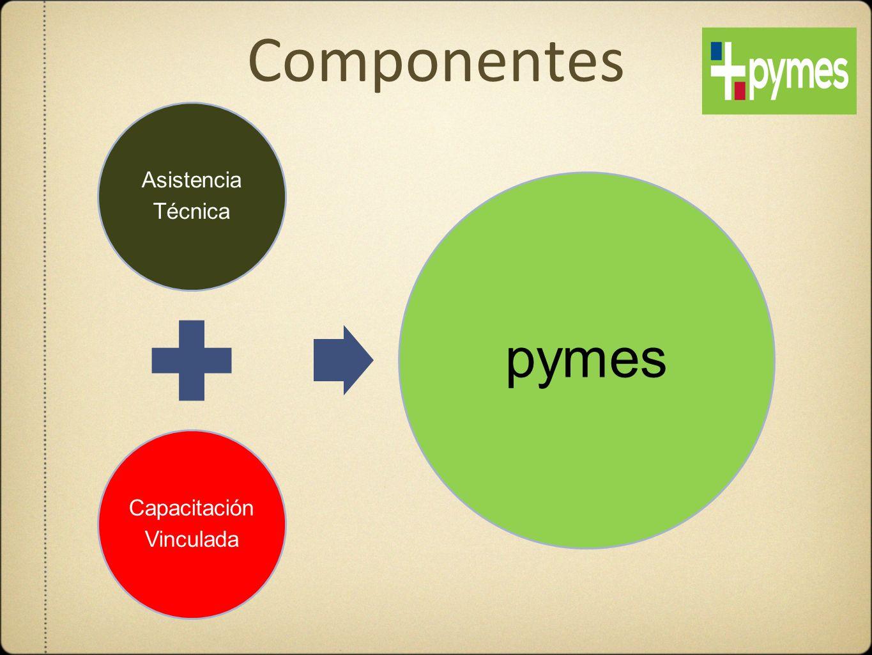 Componentes Técnica Asistencia Capacitación Vinculada pymes