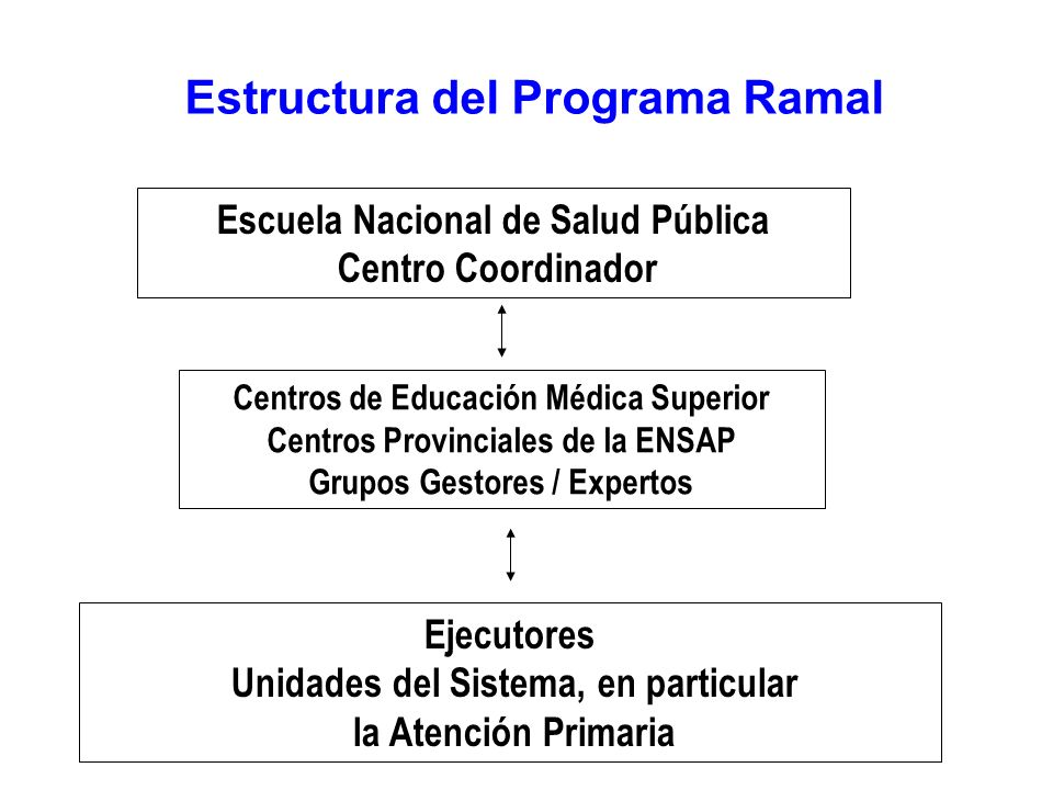 Estructura del Programa Ramal