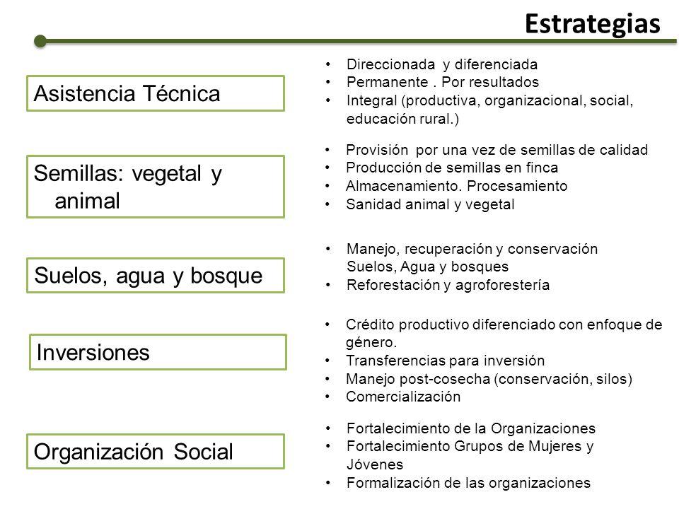Estrategias Asistencia Técnica Semillas: vegetal y animal