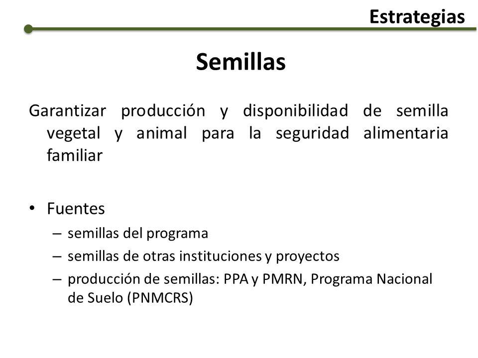 Estrategias Semillas. Garantizar producción y disponibilidad de semilla vegetal y animal para la seguridad alimentaria familiar.