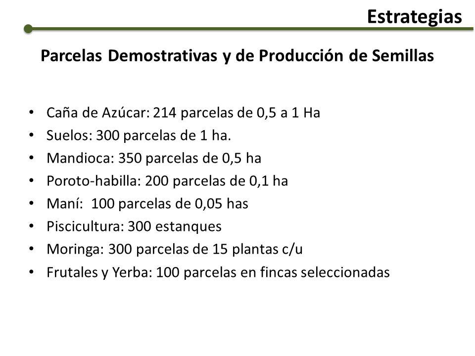 Parcelas Demostrativas y de Producción de Semillas