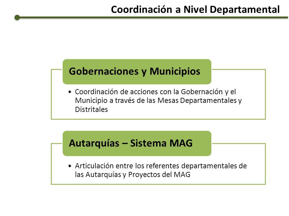 Coordinación a Nivel Departamental