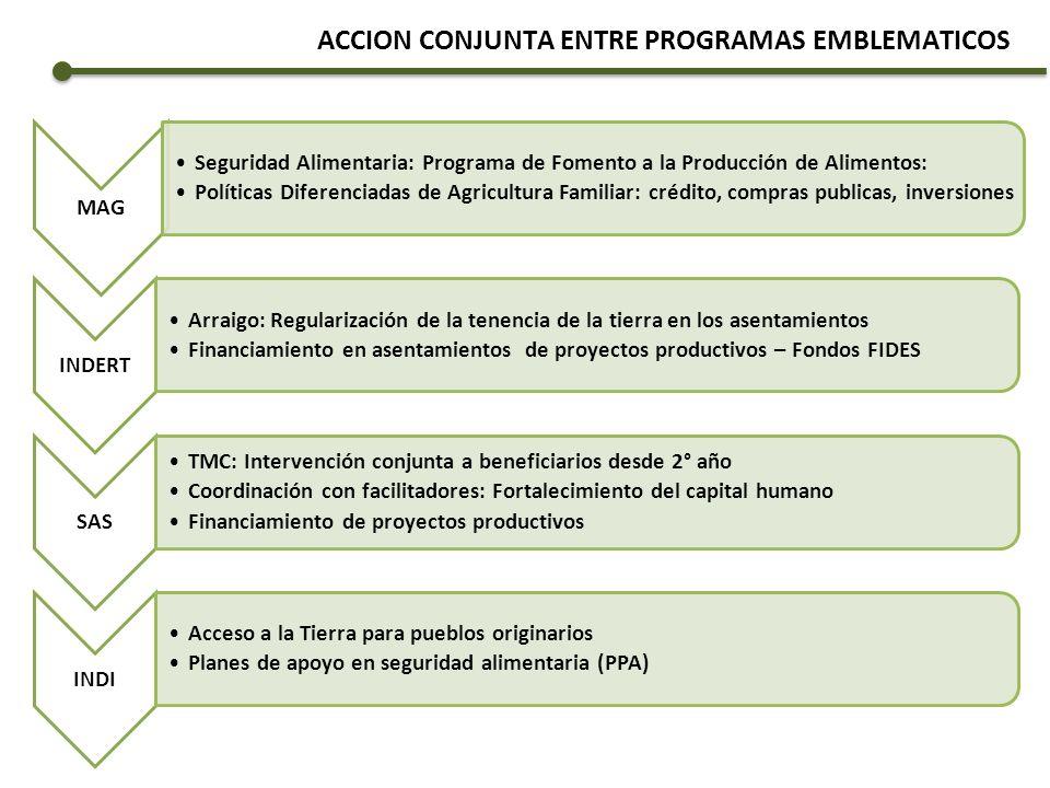 ACCION CONJUNTA ENTRE PROGRAMAS EMBLEMATICOS