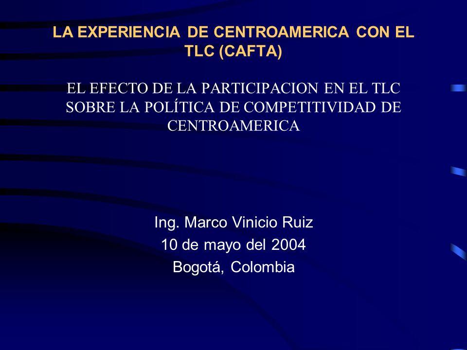 Ing. Marco Vinicio Ruiz 10 de mayo del 2004 Bogotá, Colombia