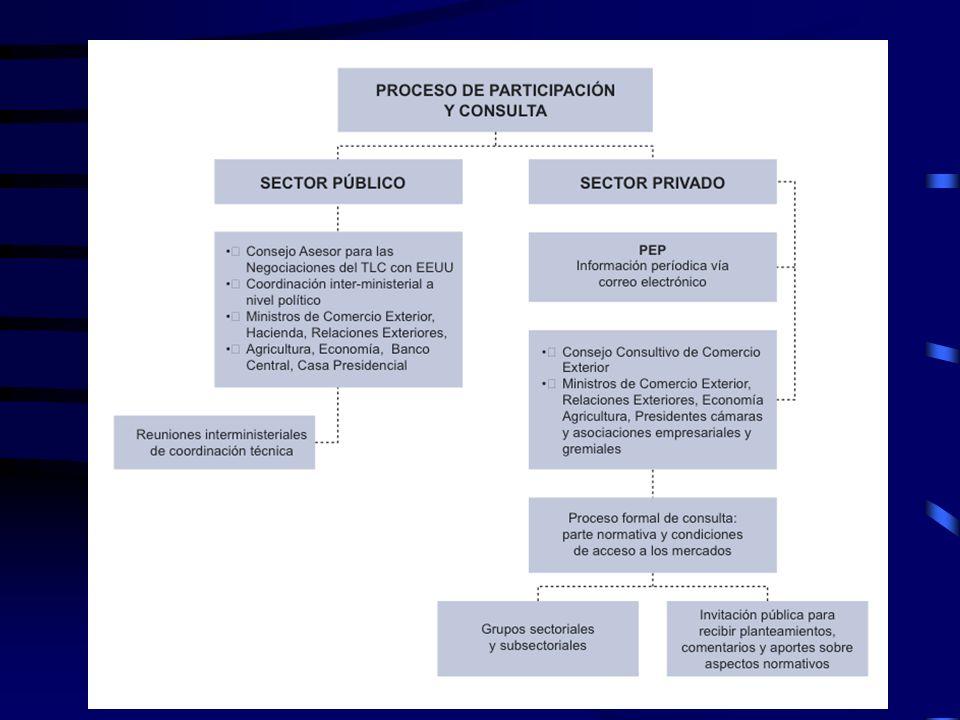 Proceso de participación y consulta