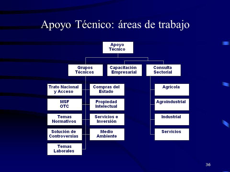 Apoyo Técnico: áreas de trabajo