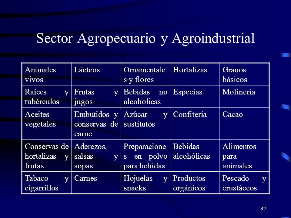 Sector Agropecuario y Agroindustrial
