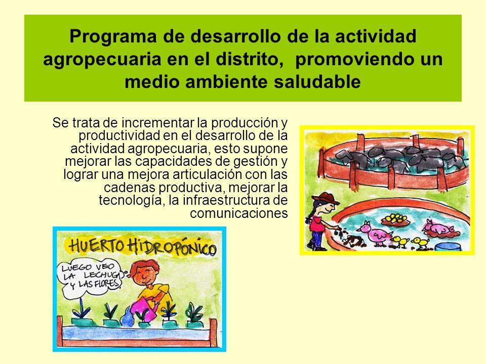 Programa de desarrollo de la actividad agropecuaria en el distrito, promoviendo un medio ambiente saludable