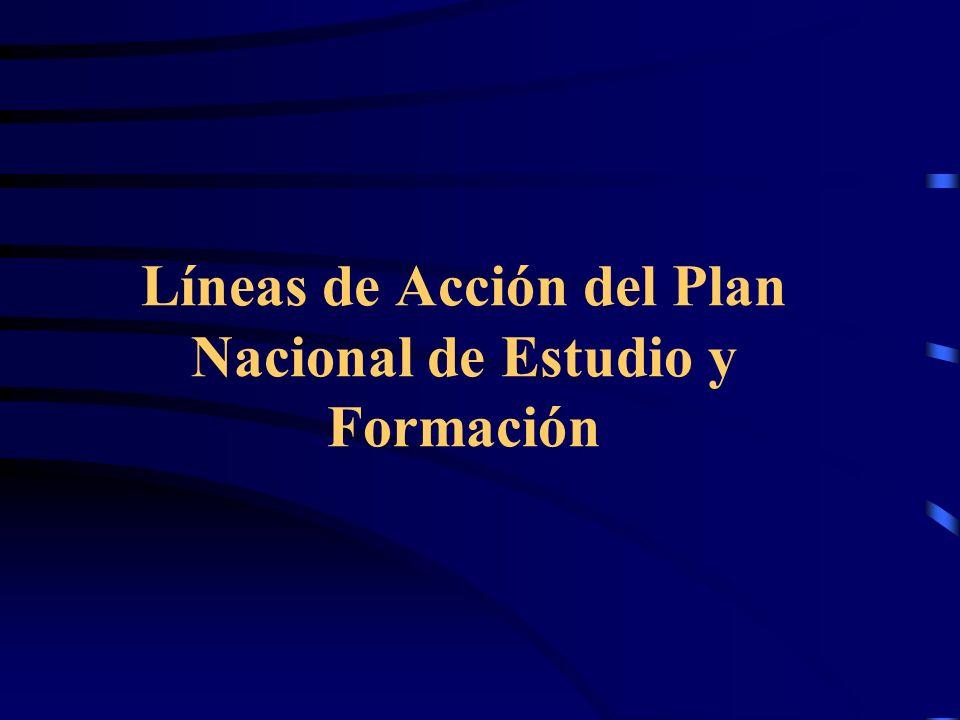 Líneas de Acción del Plan Nacional de Estudio y Formación