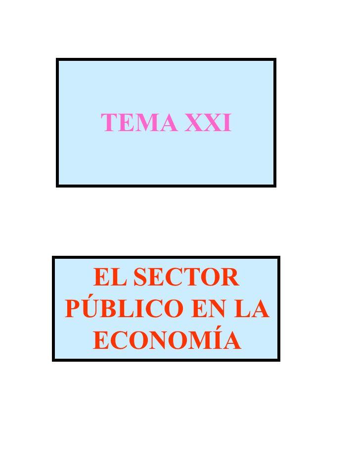 EL SECTOR PÚBLICO EN LA ECONOMÍA