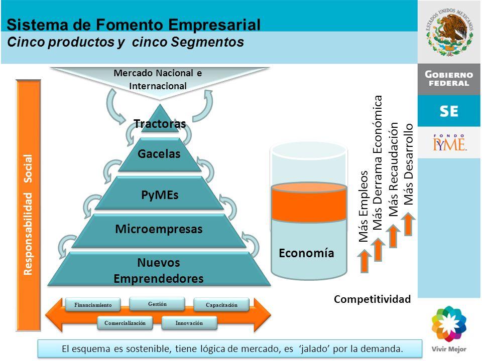 Sistema de Fomento Empresarial Cinco productos y cinco Segmentos
