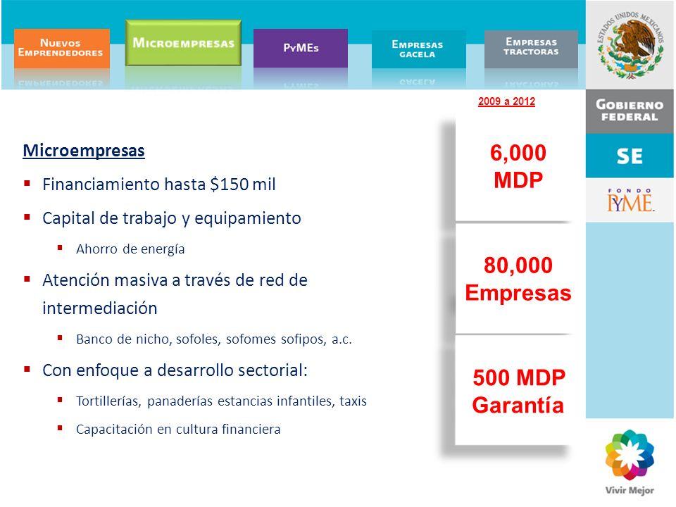6,000 MDP 80,000 Empresas 500 MDP Garantía