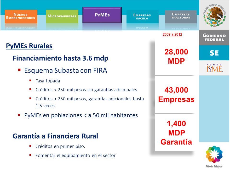 28,000 MDP 43,000 Empresas 1,400 MDP Garantía