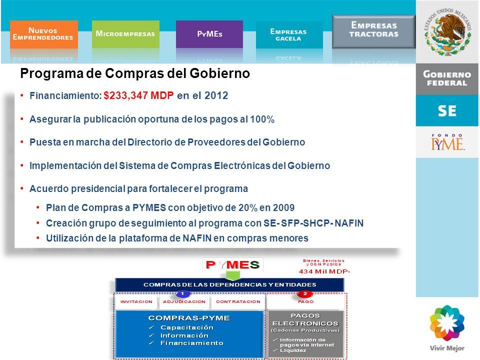 Programa de Compras del Gobierno
